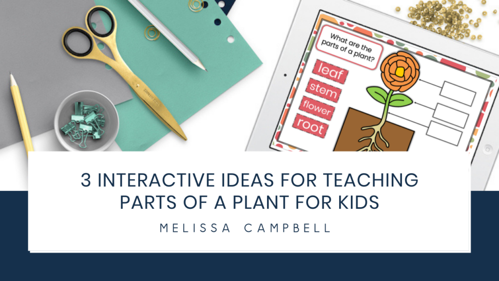 parts-of-a-plant-for-kids